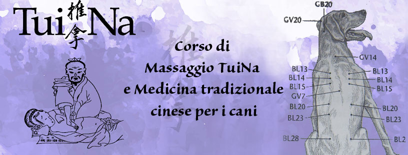 corso-massaggio-tuina-medicina-cinese