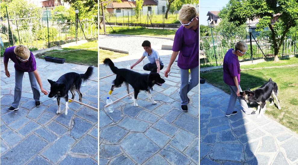 Riabilitazione veterinaria a domicilio Torino